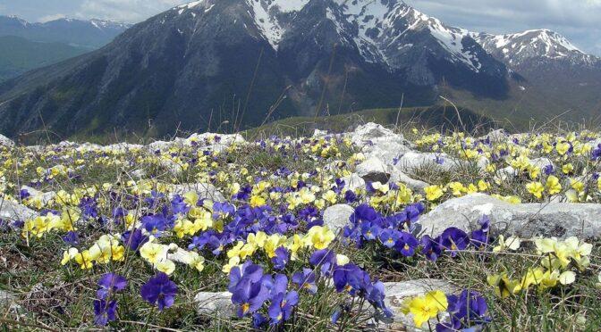 Il Cammino dei briganti – prøv den historiske vandrerute i Abruzzos bjerge der følger partisanernes stier fra krigen under Italiens samling